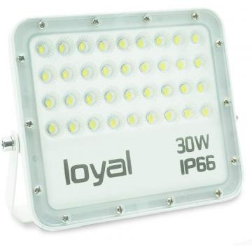 loyal 30W LED spotlight, 2700LM super bright LED spotlight, cold white 6000K, LED floodlight outdoor spotlight, IP66 waterproof floodlight outdoor spotlight for garden, garage, sports field, yard