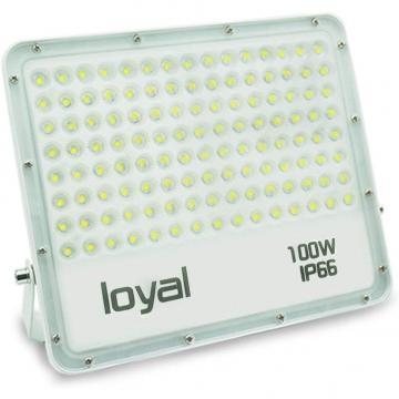 loyal 100W LED spotlight, 9000LM super bright LED spotlight, cold white 6000K, LED floodlight outdoor spotlight, IP66 waterproof floodlight outdoor spotlight for garden, garage, sports field, yard