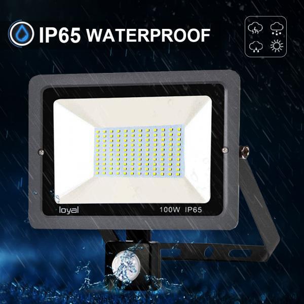 100W LED Strahler mit Bewegungsmelder Superhell LED Außenstrahler Fluter Flutlicht IP65 Flutlichtstrahler Scheinwerfer Licht für Garten, Garage,Sportplatz Energieklasse A++